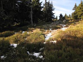 Photo: Śnieżnickie stoki