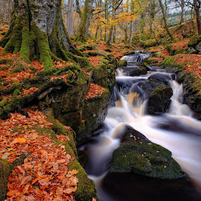 Autumn in Faerieland 2 by Paul Holmes - Landscapes Waterscapes