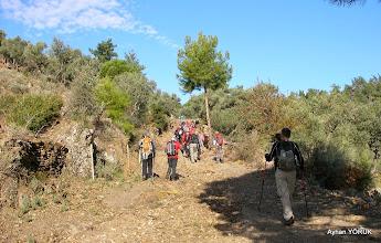 Photo: Kargıcak - Sarıkaya Köyleri arası - Milas Karya(Karia) Yolu 7. Etabı - 29.11.2014