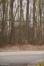 Photo: Tussen de bomen zie je de contouren van de vroegere controletoren van het militaire vliegveld Hier heb ik een 25-tal jaren gewerkt. Was een mooie tijd!