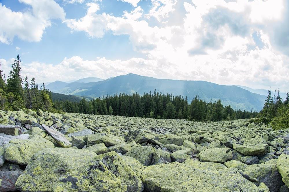 Кам'яне поле на спуску з г.Горган Ілемський