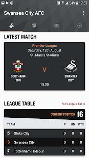 Swansea City - náhled