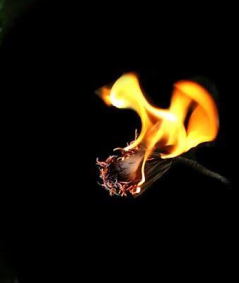 Hot! di VodKamera