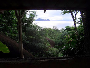 Photo: View from the toilet.