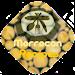 Fast Moroccan Recipes Maroc Icon
