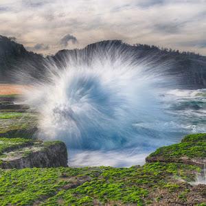 water dragon.jpg