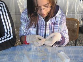 Photo: Nieves una de las jóvenes y activas voluntarias.