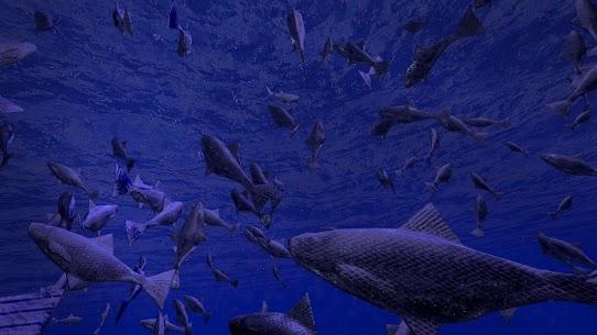 Be a Fish – VR Simulator 2