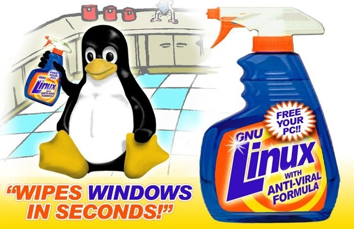 Linux Wipes Windows