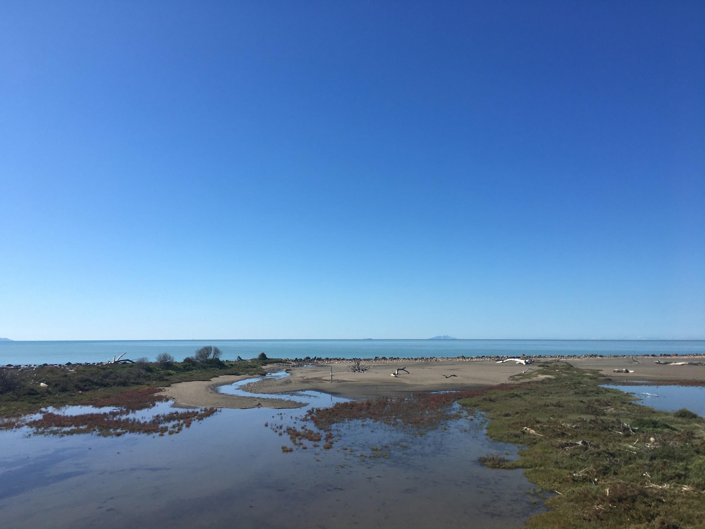 Spiaggia dei tronchi, Parco naturale della Maremma