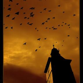 by Veronica Gafton - Digital Art Places ( tower, sky, birds )