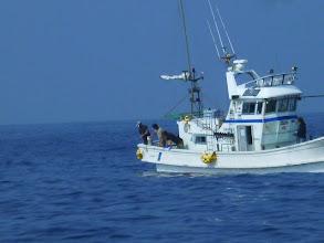 Photo: 釣れた魚は、何ですか? ・・・ヤガラだった。