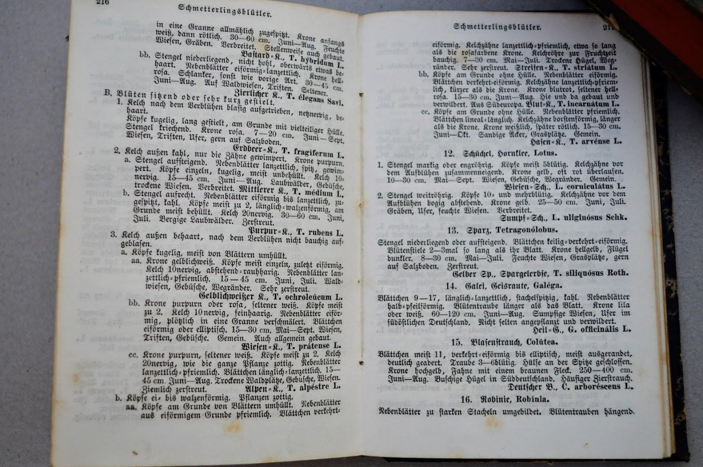 1882 - Schmidlin's Anleitung zum Botanisieren und zur Anlegung von Pflanzensammlungen