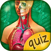 The Human Anatomy Quiz App On Human Body Organs