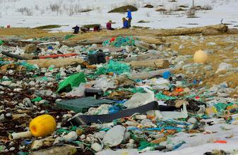 Photo: Beach before cleaning II