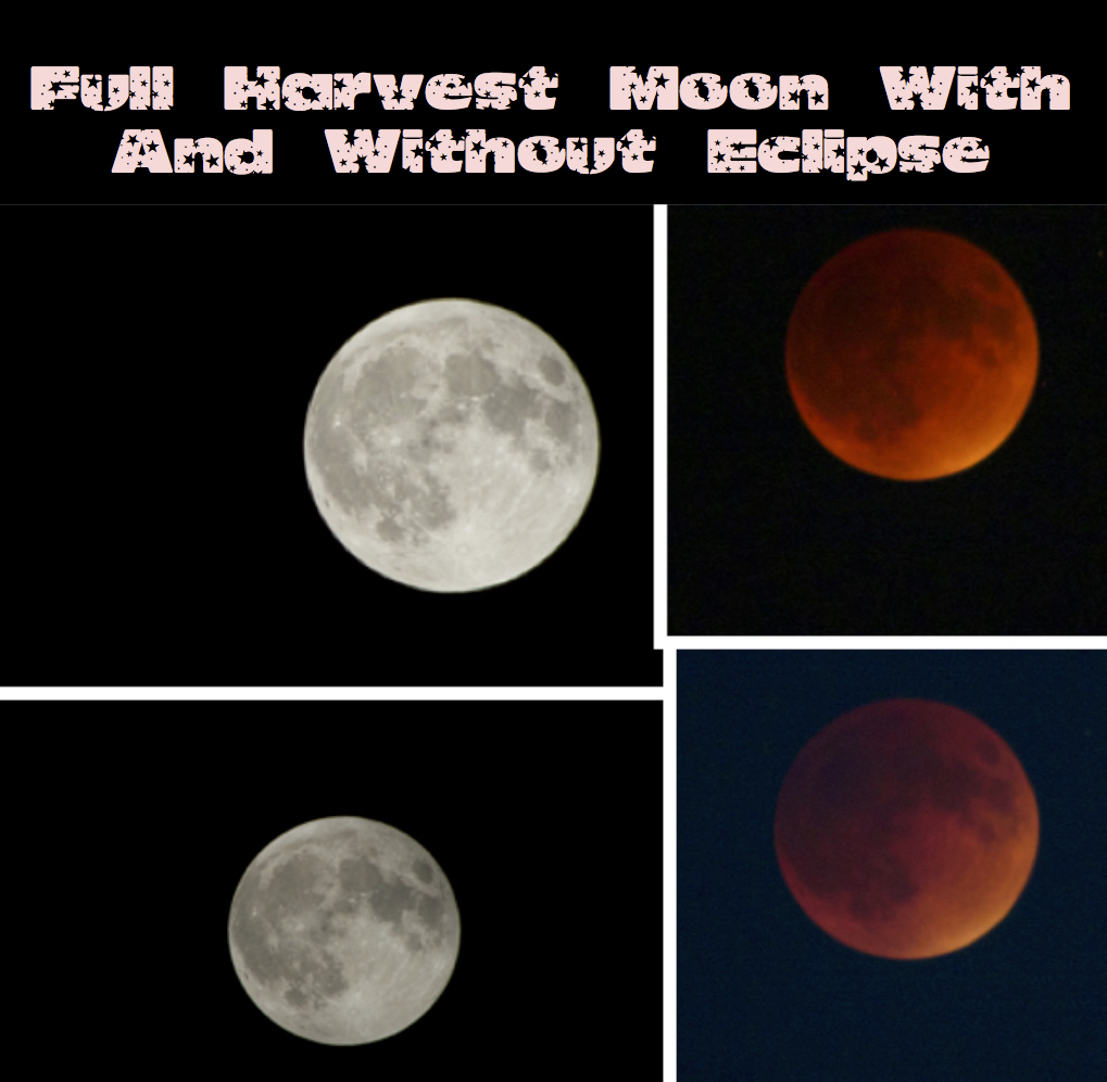 Harvest Blood Moon Collage.jpg
