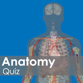 Anatomy Quiz