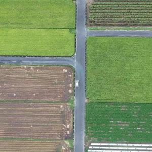 ムーヴカスタム L185S RS のカスタム事例画像 nezuさんの2020年09月23日13:35の投稿