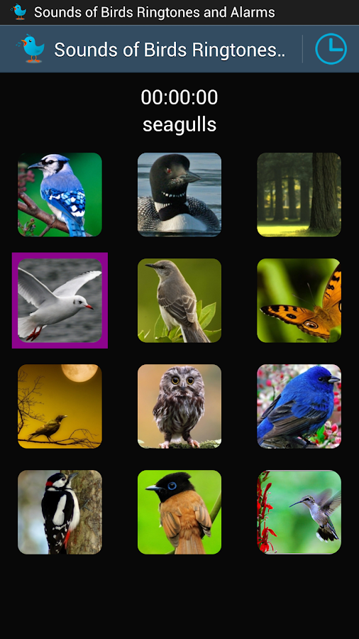 Sounds of Birds Ringtones- screenshot