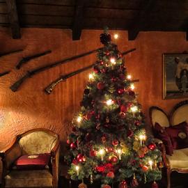 by Milanka Dimic - Public Holidays Christmas (  )