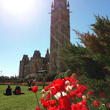 Photo: A lovely late afternoon on Parliament Hill after class in Ottawa today