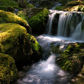 by Lee Sutton - Landscapes Waterscapes ( water, waterfall, landscape )