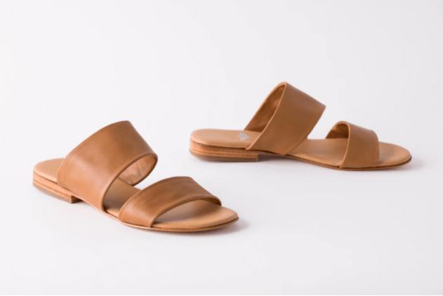 Camel Slides