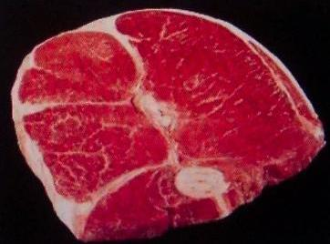 Whipe meat with a cold damp cloth. Dice meat. REMEMBER, meat is always sweeter closer to...