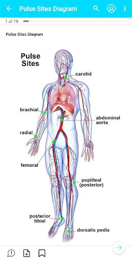 My Nursing Mastery: Student, NCLEX & Nurse's Guide 6.11.4711 screenshots 4