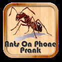 Ants On Phone Prank icon