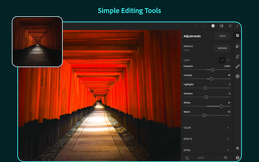 Adobe Lightroom - Photo Editor & Pro Camera 5.1 screenshots 9