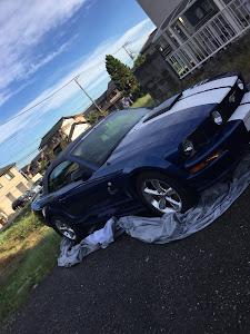 マスタング コンバーチブル  09 GTのカスタム事例画像 PONY-Kさんの2018年10月01日18:46の投稿