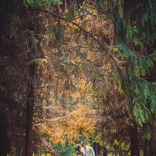 Wedding photographer Svetlana Mazitova (Mazitova). Photo of 08.09.2014