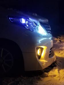 アルファード ANH25W 240S タイプゴールド 4WDのカスタム事例画像 タイプゴールド@L185sさんの2019年01月19日20:05の投稿
