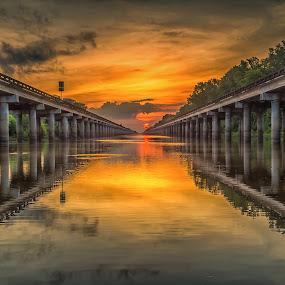 Atchafalaya Basin Sunrise by John Chitty - Landscapes Sunsets & Sunrises ( atchafalaya, louisiana, lines, sunrise, bridges,  )