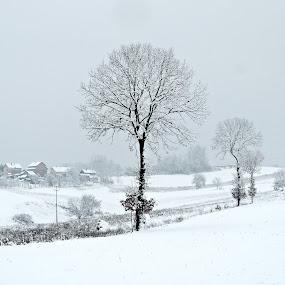 by Olivera Prelevic Tanasic - Landscapes Weather