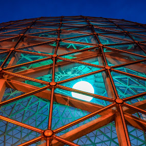 The Dome by Anna-Lee Nemchek Cappaert - Buildings & Architecture Architectural Detail ( milwaukee, greenhouse, blue hour, night, mitchell park domes, desert dome )