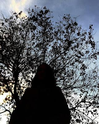 Penombra d'autunno di saraforlini18