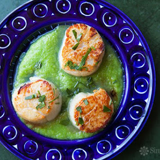 Seared Scallops with Asparagus Sauce.
