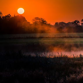 Misty Sunrise by Alistair Forrest - Landscapes Sunsets & Sunrises ( sunrise, pool, fields, fife, mist, scotland )