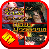 New Ninja Assassin Puzzle