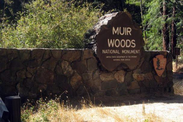 Muir Woods National Monumet