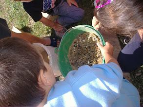 Photo: palline di argilla con i semi