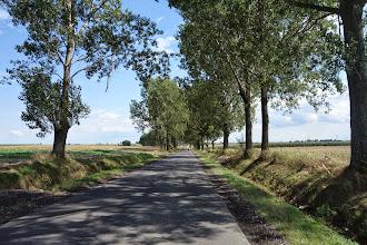 Photo: cesta z Biala směrem na Glogowek