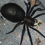 Spider Hunter Amazing City 3D 1.015