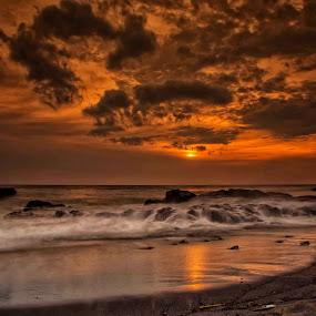 Golden sunset by Sam Moshavi - Landscapes Sunsets & Sunrises