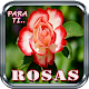 Download Rosas De Colores Con Frases Para Enamorar For PC Windows and Mac
