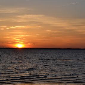 Sunset Near Dewey Beach by Raymond Paul - Landscapes Sunsets & Sunrises ( atlantic ocean, bay, sunset, beach )