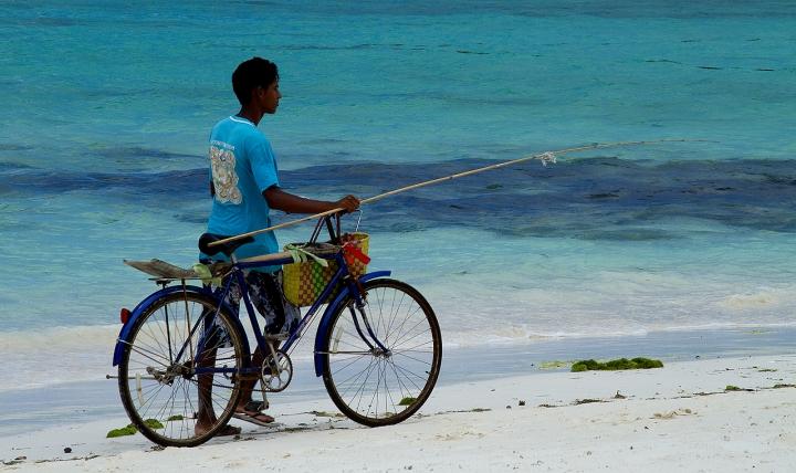 Pescare o... Pedalare?!? di Francesca Malavasi