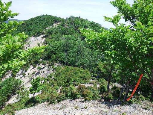 雷峠と奥に地倉山
